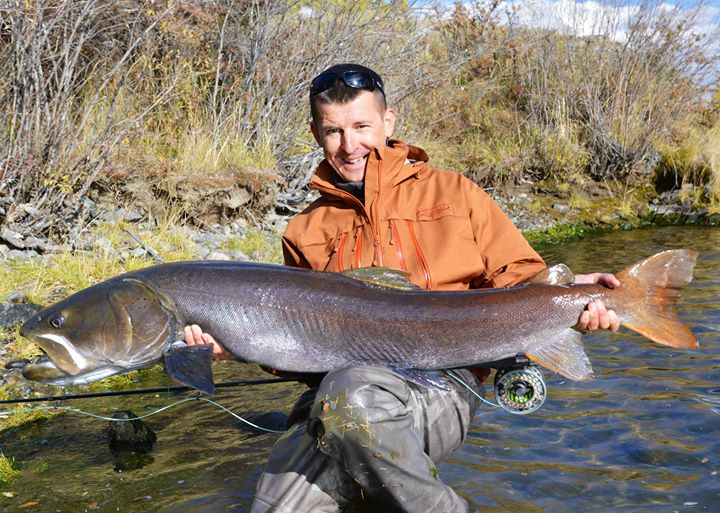 Taimen, world record on fly rod..jpg