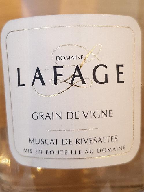 Blanc, Domaine Lafage, Muscat