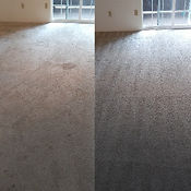 Carpet Pets Cleaning Colorado Springs