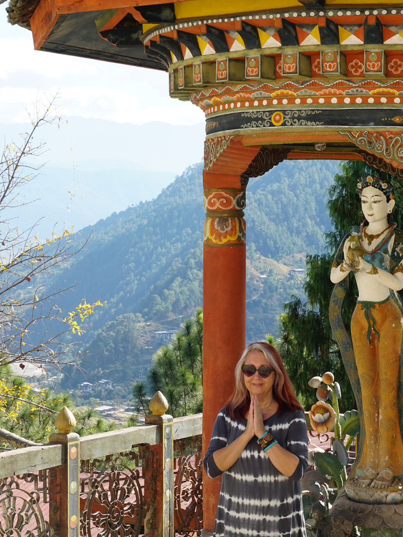 Robin, Bhutan 2018