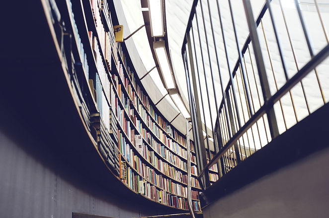 School%20LIbrary_edited.jpg