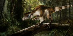 sinosauropteryx4.jpg