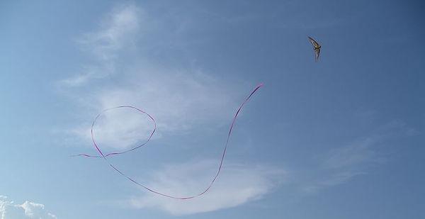 ulm-pendulaire-banderolle-500m-aerodrome-de-pizay-3.jpg