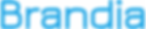 BRANDIA Logo 200x200....png