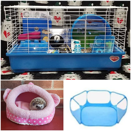 Holiday hedgie & complete cage kit combo(#4 Dec.litters- P.Sillies)