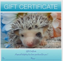 Gift Certificate for hedgehog  (PIF  Feb #2 T.Dennis)