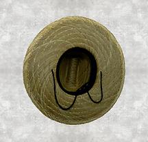 chapéu FUNDO.png