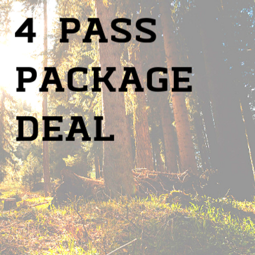 Day Passes Adult: Pack of 4