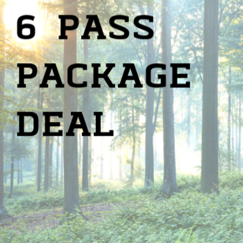 Day Passes Adult: Pack of 6