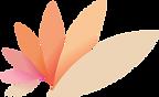 Healite logo.png