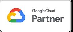 google-partner (1).png
