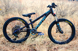 Share the Ride Bike_edited
