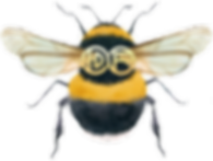 Logo of a graphic bumblebee with wings outstretched. Donna's initials are on the bees back between the wings.