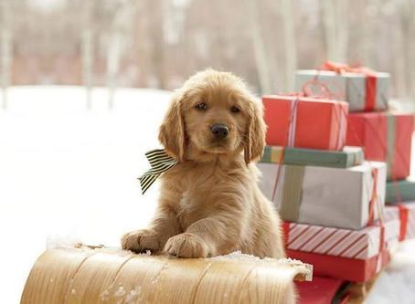 Идеи подарков для НЕЕ: подарки для мам, бабушек, сестер, подруг и всех всех любимых девочек!