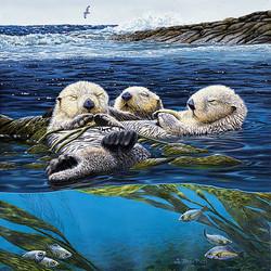 Sea Otter Siesta