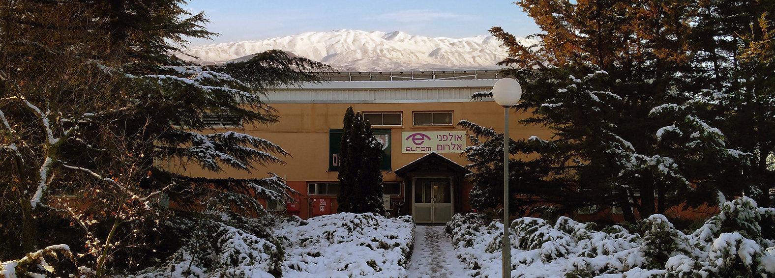 Elrom Studios localization services