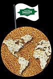 ZPH Flag Logo.jpg