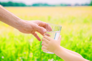 The Cost of Source Water Protection