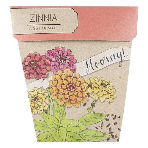 Gift of Seeds: 'Zinnia'