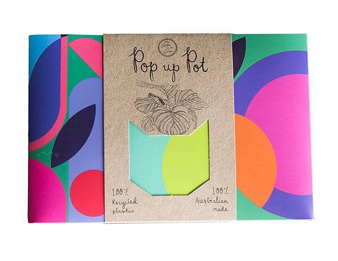 Pop up Pot: 'Plant Party'