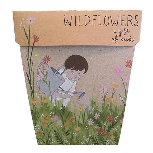 Gift of Seeds: 'Wildflowers'