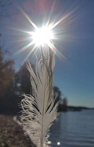 Angel Feather Sun Activaion Light Codes White Magic