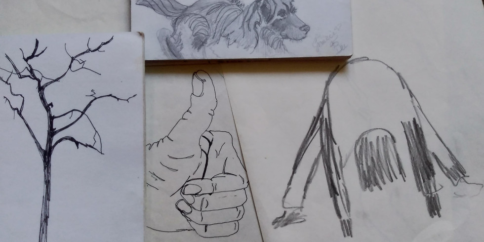 Drawing Basics - 4 part evening series