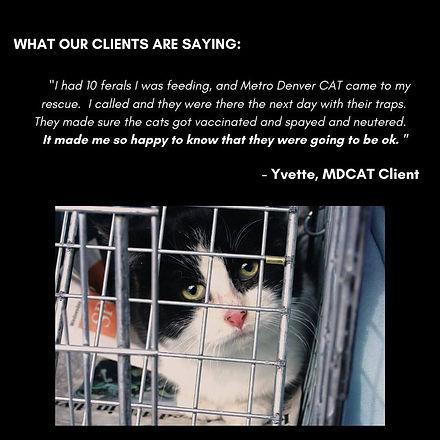 Client-testimonial-mobile.jpg