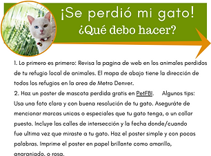 Spanish - lost cat (1).png