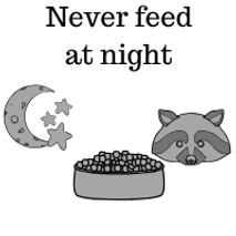 Never-feed-at-night-graphic.png