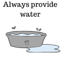 Always-provide-water-graphic.png