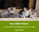 2020 vision for website.png