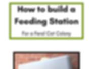 Feral-cat-Feeding-Station-Building-instr