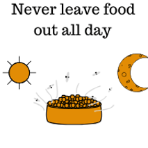 Never-Leave-Food-Out-All-Day-graphic.png
