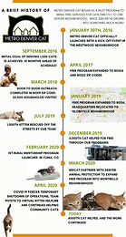 We're celebrating 5 years of hope for cats!