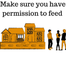 Make-sure-you-have-permission-to-feed-gr