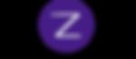 180417 - ZkinLogo(2).png