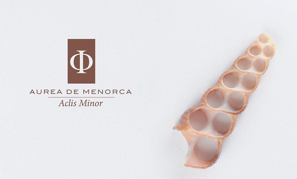 Aclis Minor