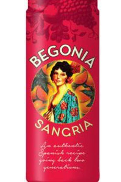 Begonia Red Sangria