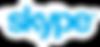 Skype-Logo-PNG-Vector.png