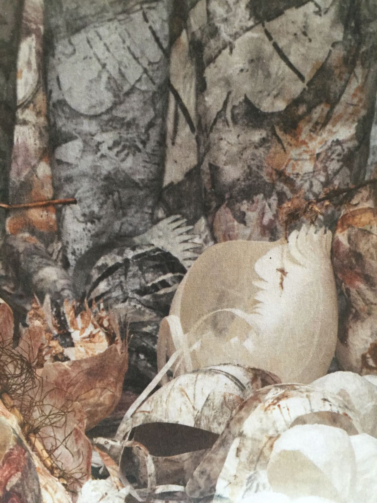 Rowena Pearce - Forest Floor