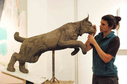 Lynx - making of