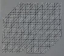 tekening 3-dimensionaal weefsel 2. 40x40
