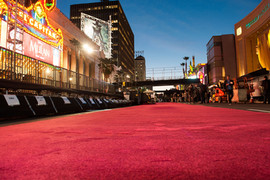 red_carpet_2.0.jpg