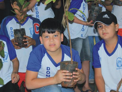 CRV Industrial doa 200 mudas de árvores nativas e frutíferas para Escola Municipal Dom Pedro I, em S