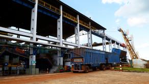 CRV Industrial inicia a Safra 2018/19...