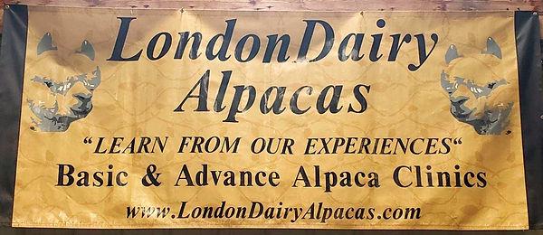 LondonDairy Alpacas_edited.jpg