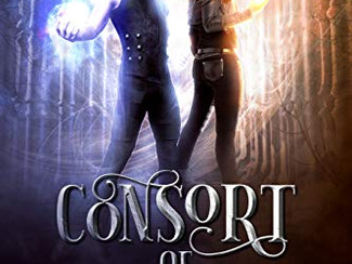 Love YA fantasy? Here's a new book for you!