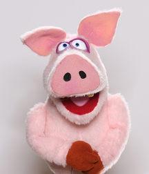Schwein Eberhard
