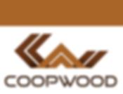 Curso proyecto Coopwood.png